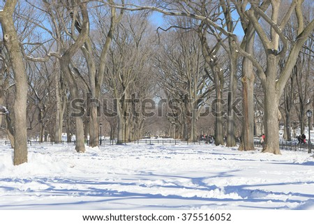 Central Park covered with heavy snow, Mall View