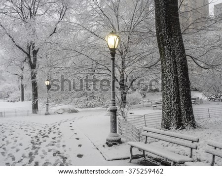 Central Park during a snow storm on Febuary 4th 2016 New York City,Manhattan photo shot in area near Gapstow bridge and 60th street in the morning