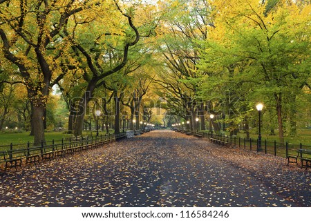 Central Park. Image of  The Mall area in Central Park, New York City, USA at autumn. - stock photo