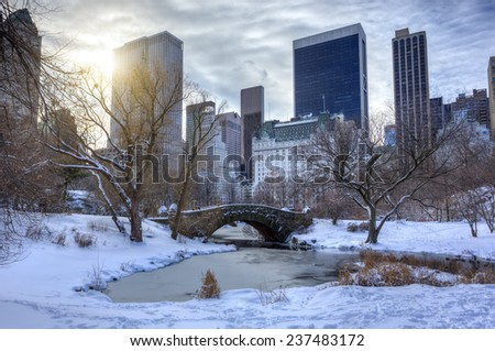 Central Park,New York City  - stock photo