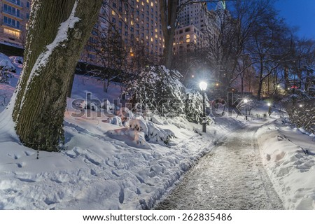 Central Park, New York City during a winter snow storm - stock photo