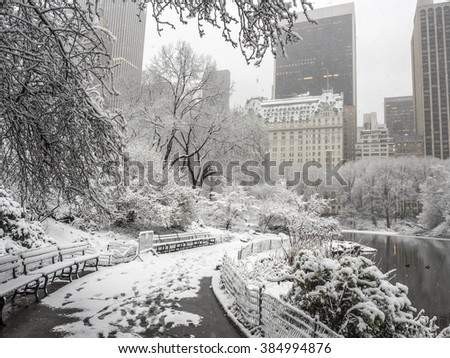 Central Park, New York City during snow storm 2/5/2016  - stock photo