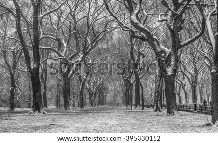 Central Park, New York City during snow storm in late March - stock photo