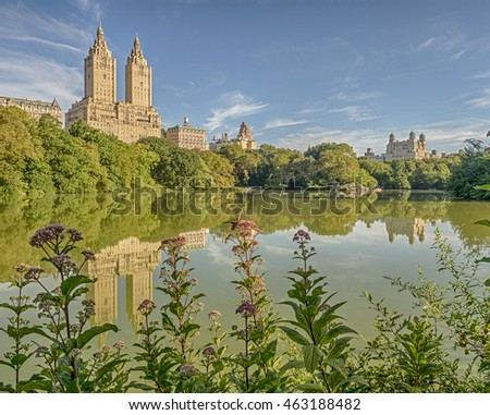 Central Park, New York City in summer at the lake with flowers