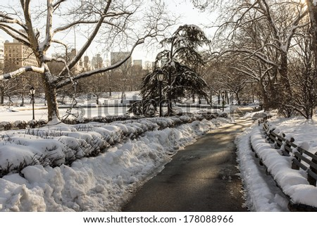 Central Park, New York City in winter after snow storm - stock photo