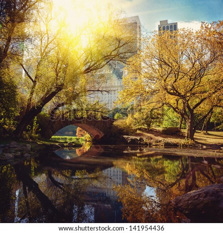Central Park pond and bridge. New York, USA. - stock photo