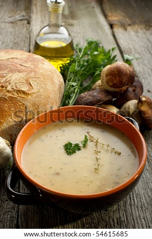 cep soup on bowl - stock photo