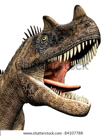 Ceratosaurus dinosaur closeup head, mouth open teeth showing. Predator theropod, large head, short forelimbs, robust hind legs,  long tail. Jurassic Period. Isolated illustration  white background. - stock photo