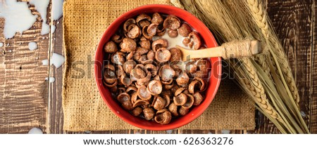 Coco crunch stock images royalty free images vectors shutterstock cereal choco milk woodbowl for breakfast ccuart Choice Image
