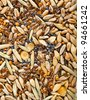 Cereal Grains and Seeds : Rye, Wheat, Barley, Oat, Corn, Flax, Poppy, Millet close up background - stock photo