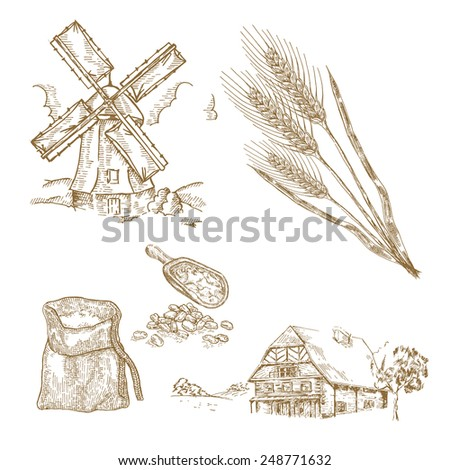 Cereals set. Hand drawn illustration windmill, wheat, farm house in vintage style - stock photo
