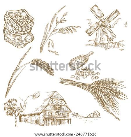 Cereals set. Hand drawn illustration windmill, wheat, oats, farm - stock photo