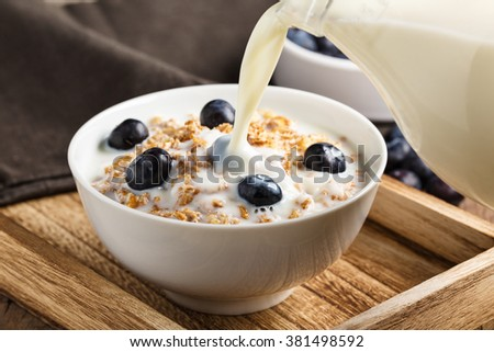 Cereals with nuts, fresh blueberries and milk. - stock photo