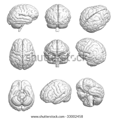 CG style 3D model of brain in various angles. - stock photo