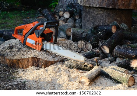 chainsaw and sawed wood - stock photo