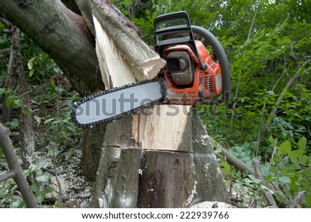 Chainsaw on wood cuttings. Close up