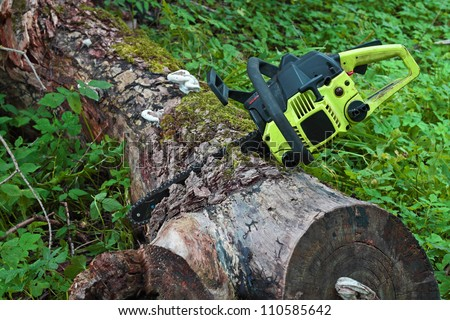 Chainsaw stuck in the old thick log