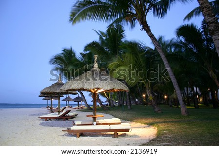 Chairs and umbrellas on the beach under palm trees - stock photo