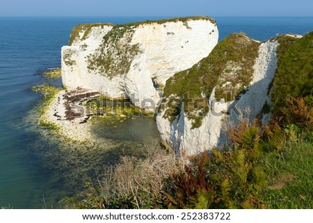 Chalk cliffs Old Harry Rocks Isle of Purbeck in Dorset south England UK the most easterly point of the Jurassic Coast like the Needles isle of Wight - stock photo