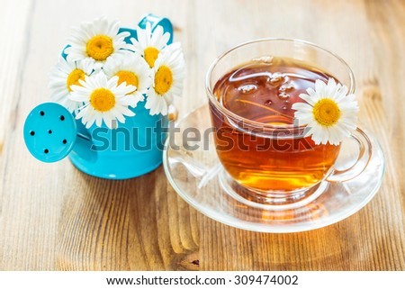 Chamomile tea in a glass cup and chamomile flowers in a small blue watering can