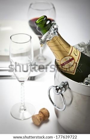 Champagne Bottle - stock photo