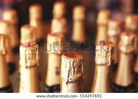 Champagne bottles in the wine store.