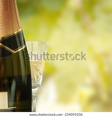 Champagne with grapes - stock photo