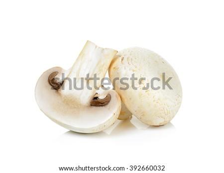 Champignon mushroom isolated on white background. - stock photo