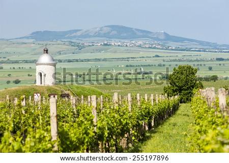 chapel with vineyard near Velke Bilovice, Czech Republic - stock photo