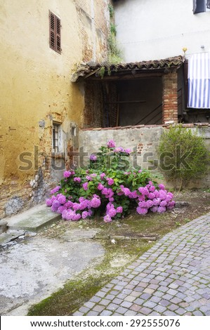 Characteristic view of the medieval village of Montemagno, in the Province of Asti (Piedmont, Northern Italy). Color photo.