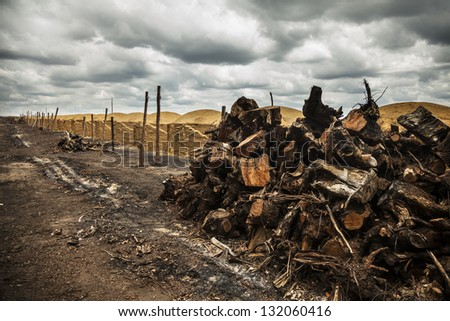 charcoal kilns at a farm with a pile of wood on the side, on a cloudy day.