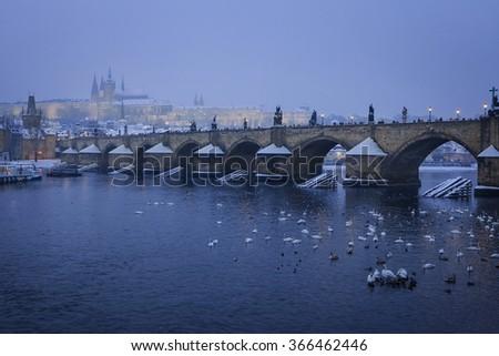 Charles Bridge and Prague Castle from Lavka, Czech Republic - stock photo