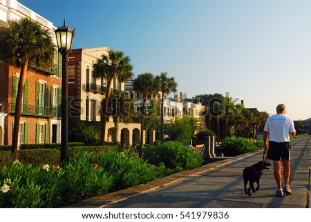 Antebellum stock images royalty free images vectors for Charleston dog house