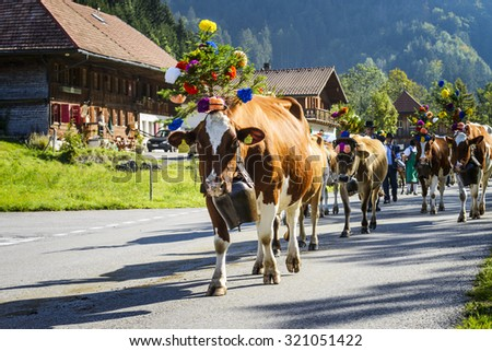 Charmey, Fribourg, Switzerland - 26 September 2015 : Farmers with a herd of cows on the annual transhumance at Charmey near Gruyeres, Fribourg zone on the Swiss alps - stock photo