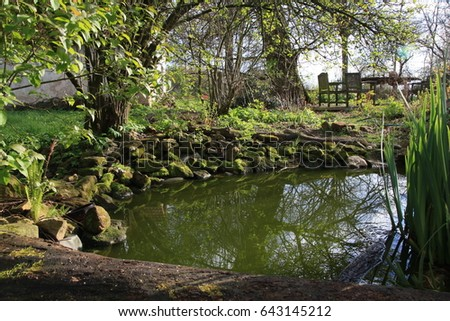 Pond stock images royalty free images vectors for Small natural pond