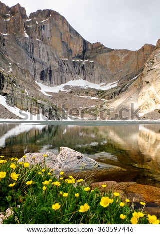 Chasm Lake and Wildflowers Below The Diamond Face of Longs Peak.  Rocky Mountain National Park, Colorado. - stock photo