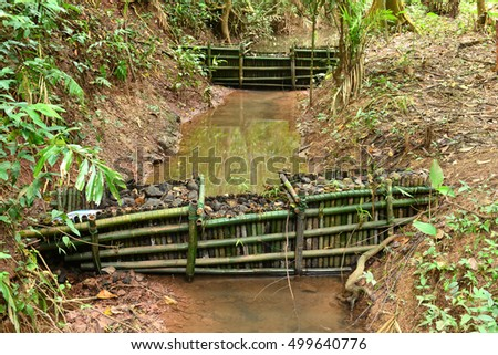 Check dam in a deep forest, Khaoyai National park Thailand