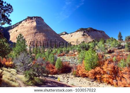 Checkerboard Mesa is a rock formation in the eastern portion of Zion National Park in Utah - stock photo