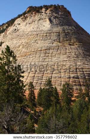 Checkerboard Mesa. Lithified desert sand dune deposits of the Navajo Sandstone formation, Zion National Park, Utah, USA - stock photo