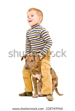 Cheerful boy playing with a puppy pitbull - stock photo