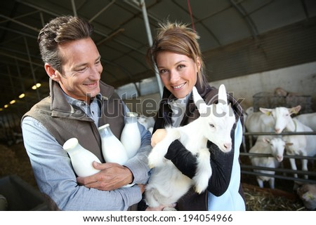 Cheerful couple of breeders in barn with goats - stock photo
