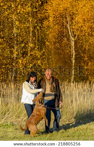 Cheerful couple playing with retriever dog autumn sunset park - stock photo