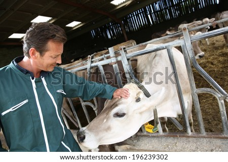 Cheerful farmer petting cow in barn - stock photo