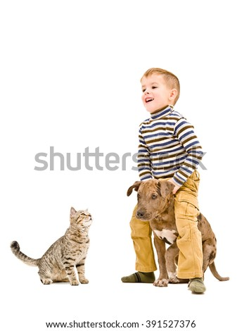 Cheerful kid playing with a puppy pitbull and cat isolated on white background - stock photo