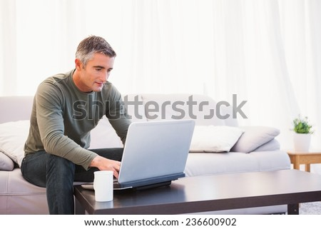 Cheerful man sitting on couch using laptop at home in the living room - stock photo