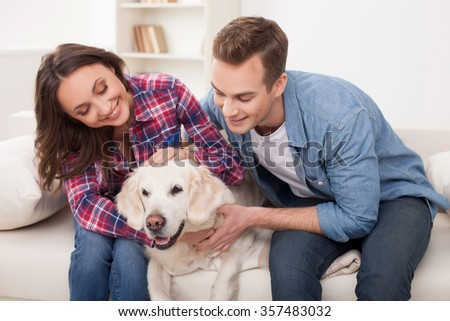 Cheerful married couple is playing with dog at home. They are sitting on sofa and stroking the animal. The man and woman are smiling - stock photo