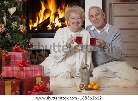 Cheerful mature couple celebrating Christmas holidays near Christmas tree  - stock photo