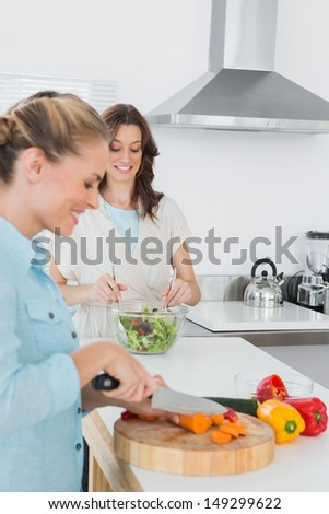Cheerful women cooking together in the kitchen - stock photo