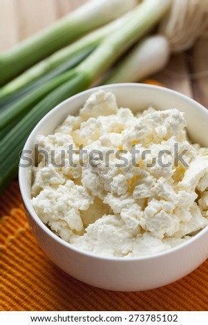 cheese and onion  - stock photo