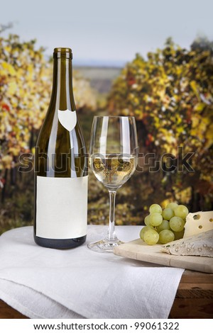 Cheese on board and white wine with blank labelled bottle - stock photo